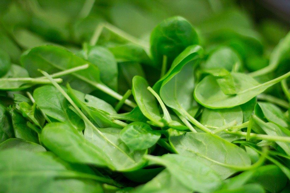Las hortalizas son fuentes naturales de vitaminas y minerales que fortalecen la salud