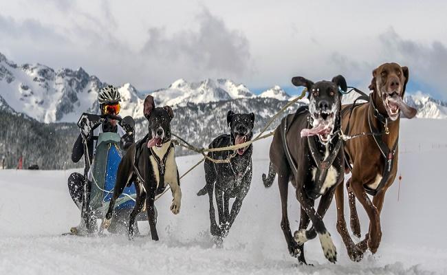 Deportes de invierno en España. 5